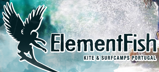 www.elementfish.de